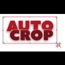 Auto Crop