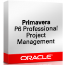 Primavera P6 Professional Project Portfolio Management