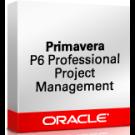 Primavera P6 Professional Project Portfolio Management