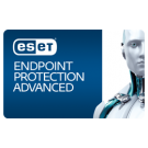 ESET Endpoint Protection Advanced Malaysia Reseller