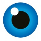 Globalsign Organization SSL Malaysia Reseller