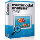 Multimodal Analysis Image