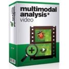 Multimodal Analysis Video