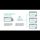 Comodo Enterprise SSL Pro Wildcard Certificate