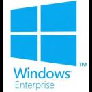 Microsoft Windows Enterprise perDVC