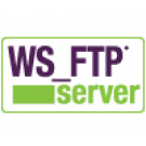 WS FTP Malaysia, WS_FTP Server